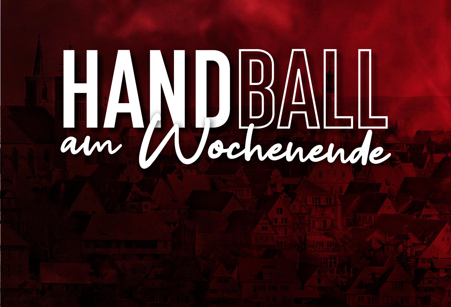 Read more about the article Handballturnier der E-Jugend